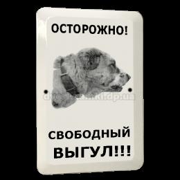 """Табличка """"Осторожно злая собака""""  5"""